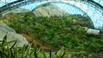 eden_project_gardening_of_eden04.jpg
