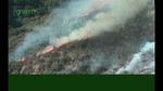 nwf_western_wildfires04.jpg
