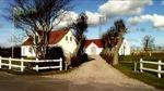 newsmarket_green_house_denmark03.jpg