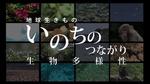 biodiver_15min001.jpg