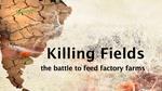 killing_fields1_002.jpg