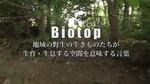 biotop_03.jpg
