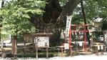 chichibu003.jpg