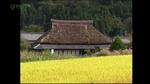 satoyama_01.jpg