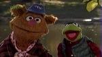 nwf_muppets103.jpg
