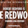 ロバート・レッドフォード/ Nature Is Speaking 「Redwood / セコイア杉」